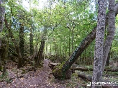 Hoces del Río Duratón - Sepúlveda;caminos y senderos viajes y rutas senderos y caminos